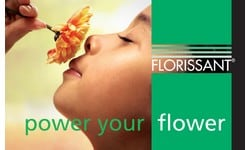 https://www.summerflowers.eu/wp-content/uploads/2018/10/summerflowers-sponsor-florissant.jpg